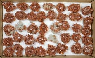 "Buy Wholesale Lot: 2 to 2.5"" Twinned Aragonite Clusters  - 39 Pieces - #134140"