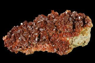 "Buy 3.1"" Ruby Red Vanadinite Crystals on Barite - Morocco - #134704"