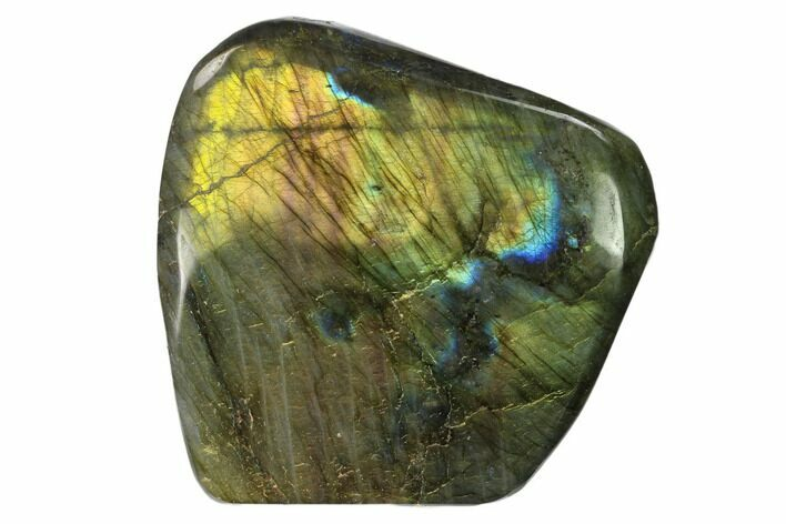 "3.1"" Flashy Polished Labradorite Free Form - Madagascar"