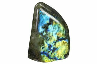 "4.1"" Flashy Polished Labradorite Free Form - Madagascar For Sale, #134759"