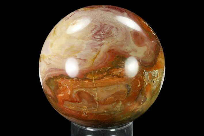 "3.9"" Colorful, Petrified Wood Sphere - Madagascar"