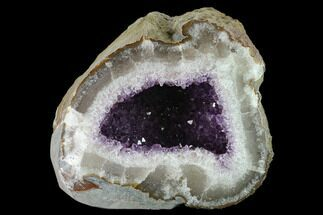 "6.3"" Wide, Purple Amethyst Geode - Uruguay For Sale, #135344"