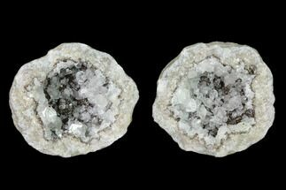 Calcite  - Fossils For Sale - #135666