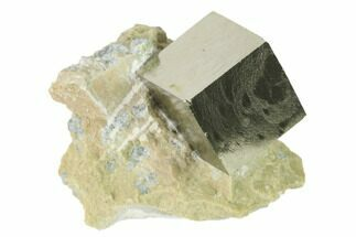 "Buy .65"" Pyrite Cube In Matrix - Navajun, Spain - #136720"