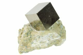 "Buy .61"" Pyrite Cube In Matrix - Navajun, Spain - #136723"