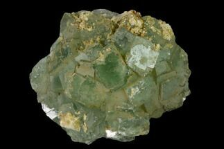 Fluorite  - Fossils For Sale - #136881