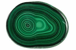 Malachite - Fossils For Sale - #137055