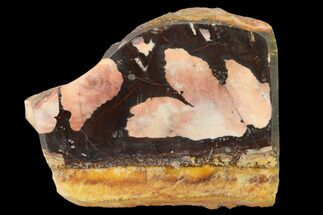 Chalcedony var. Jasper - Fossils For Sale - #137070