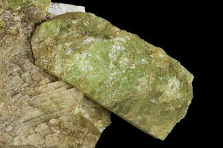 Yellow-Green Fluorapatite Crystals in Calcite - Ontario, Canada For Sale, #137111