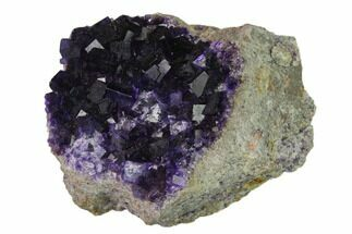 Fluorite - Fossils For Sale - #137148