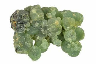 "3.9"" Botryoidal Prehnite with Epidote Inclusions - Mali, Africa For Sale, #137552"