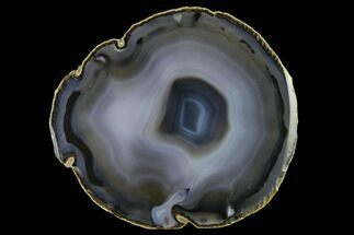 "5.9"" Polished Brazilian Agate Slice For Sale, #137678"