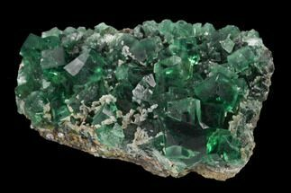 "3.5"" Fluorite Crystal Cluster -  Rogerley Mine For Sale, #134786"