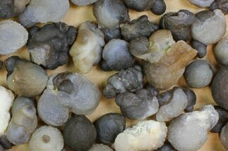 Chalcedony - Fossils For Sale - #137988