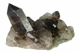 "Buy 3.5"" Dark Smoky Quartz Crystal Cluster - Brazil - #137827"