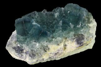 Fluorite  - Fossils For Sale - #138075