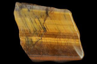 "1.8"" Polished Tiger's Eye Slab - South Africa For Sale, #140501"
