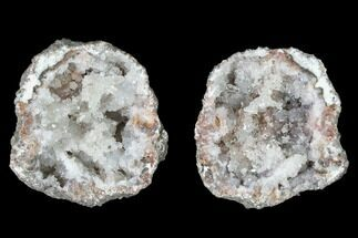 "1.3"" Keokuk ""Red Rind"" Geode - Iowa For Sale, #141047"