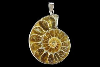 "Buy 1.55"" Fossil Ammonite Pendant - 110 Million Years Old - #142879"