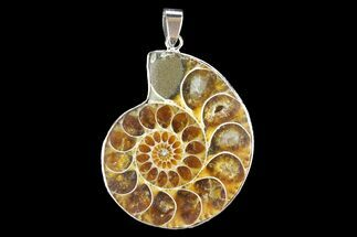 "1.6"" Fossil Ammonite Pendant - 110 Million Years Old For Sale, #142901"