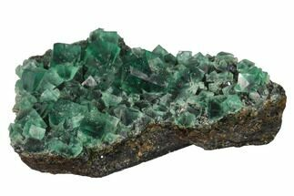 "Buy 3.6"" Fluorite Crystal Cluster -  Rogerley Mine - #143077"