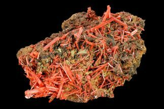 Crocoite - Fossils For Sale - #145890