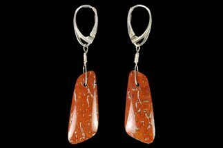 Rich, Orange-Red Agatized Dinosaur Bone (Gembone) Earrings For Sale, #146267