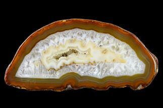"Buy 5.8"" Cut & Polished Brazilian Agate With Druzy Quartz - #146269"