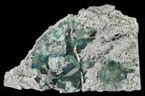 "6.1"" Blue-Green Fluorite on Sparkling Quartz - China - #147031-1"