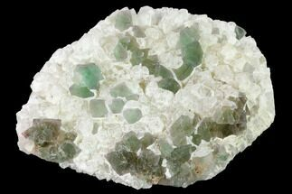 "Buy 4.8"" Green, Octahedral Fluorite Crystals on Quartz - China - #147070"