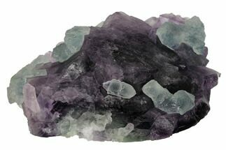"4.2"" Green Fluorite Over Purple Octahedral Fluorite - Fluorescent! For Sale, #146909"