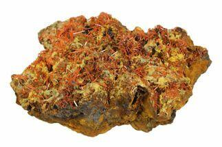 Crocoite & Gibbsite - Fossils For Sale - #147981