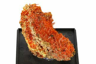 Crocoite - Fossils For Sale - #148521