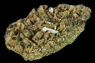 Clinozoisite - Fossils For Sale - #149598