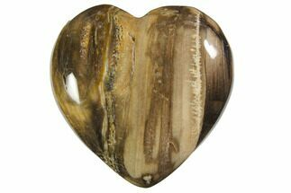 "Buy 1.6"" Polished Petrified Wood Hearts - #150385"