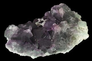 "Buy 4.1"" Purple-Green Octahedral Fluorite Crystal Cluster - Fluorescent! - #149671"