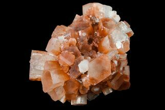 "1.7"" Aragonite Twinned Crystal Cluster - Morocco For Sale, #153839"