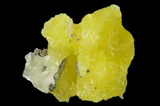 "1.45"" Lemon-Yellow Brucite - Balochistan, Pakistan For Sale, #155270"
