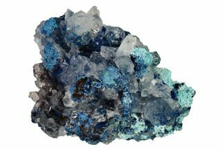 "1.4"" Shattuckite, Chrysocolla and Quartz Association - Mexico For Sale, #155834"