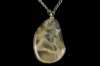 Polished Petoskey Stone (Fossil Coral) Necklace - Michigan For Sale, #156167