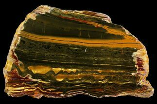 "Buy 7.3"" Polished ""Packsaddle"" Tiger Eye Slab - Western Australia - #158161"