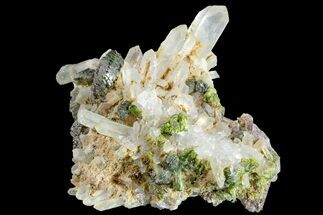 Epidote & Quartz - Fossils For Sale - #161145