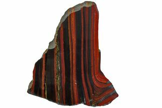 "Buy 6.2"" Polished Tiger Iron ""Stromatolite"" Slab - 3.02 Billion Years - #162007"