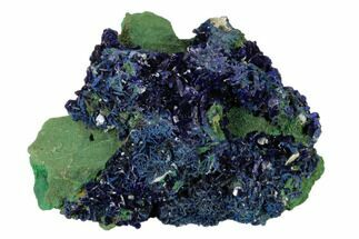 "3.5"" Sparkling Azurite Crystals with Malachite - Laos For Sale, #162605"