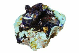 "1.7"" Sparkling Azurite Crystals on Chrysocolla - Laos For Sale, #162572"