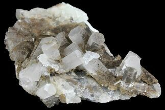 "Buy 3.3"" Columnar Calcite Crystal Cluster on Fluorite - China - #164002"