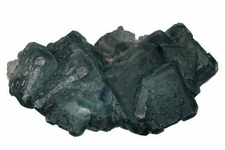 Fluorite & Quartz - Fossils For Sale - #164016