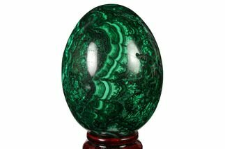 "Buy 3.6"" Flowery, Polished Malachite Egg - Congo - #164485"