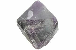 Fluorite - Fossils For Sale - #164565