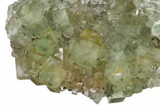 Fluorite & Quartz - Fossils For Sale - #164553